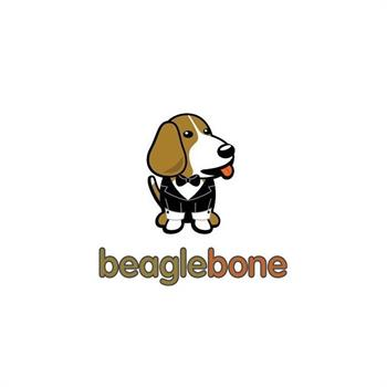 خانواده Beaglebone