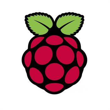 خانواده Raspberry Pi